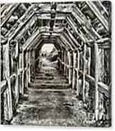Partington Cove Tunnel By Diana Sainz Canvas Print