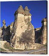 Pasabag Goreme National Park Cappadocia Turkey Canvas Print