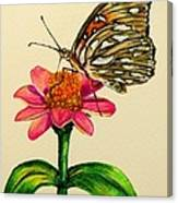 Passion Butterfly On Zinnia Canvas Print