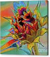 Past Summers Canvas Print