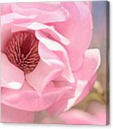 Pastel Pink Petals And Paint Canvas Print