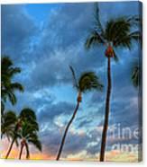 Pastel Tropical Sunrise Canvas Print