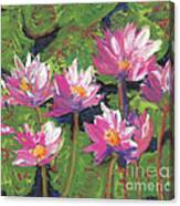 Pastel Water Lilies I  Canvas Print