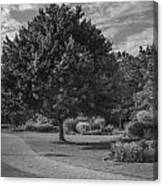 Path At Michigan State University Garden  Canvas Print