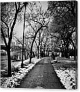 Path Me Bye  Canvas Print