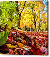 Path Of Leaves Canvas Print