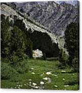 Path Of Life Ruby Mountains Stock Trail Canvas Print