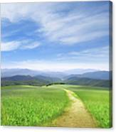 Path Through Field Leading To Distant Canvas Print