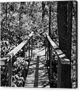 Path To  Canvas Print