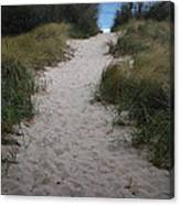 Path To The Dunes Canvas Print