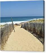 Path To The Sea Canvas Print