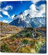 Path To Torres Del Paine Canvas Print