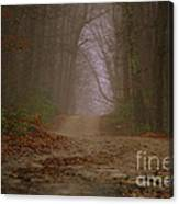 Path To Wolf Den  Canvas Print