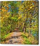 Pathway Along The Ohio And Erie Canal  Canvas Print