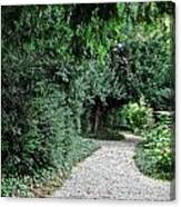 Pathway Of Monks Canvas Print