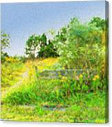 Pathway To The River Canvas Print