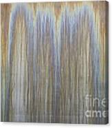 Patina On Cor-ten Steel Canvas Print