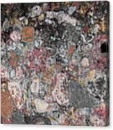 Patina On Wall Canvas Print