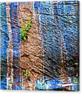 Pattern On Wet Canyon Wall From River Walk In Zion Canyon In Zion National Park-utah  Canvas Print