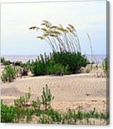 Patterned Dune With Oats Canvas Print