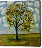 Patterned Sky Canvas Print
