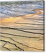 Patterns At Yellowstone #1 Canvas Print