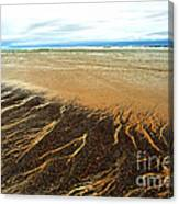 Patterns In The Tides Canvas Print