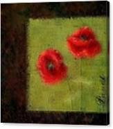 Pavot - 027023222-bl02 Canvas Print
