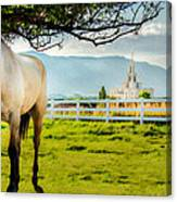 Payson Country Temple Oil Paint Texture Canvas Print