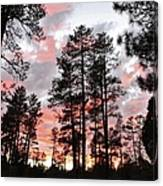 Payson Pines Sunset Canvas Print