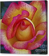 Peace In Floral Format Canvas Print