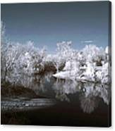 Peace River North Near Infrared Arcadia Florida Usa Canvas Print