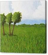 Peace River Prairie Canvas Print