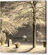 Peaceful Blizzard Canvas Print