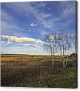 Peaceful Countryside Canvas Print