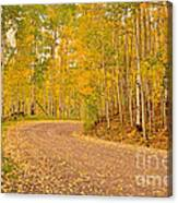 Peaceful Drive Canvas Print