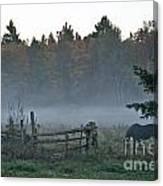 Peaceful Farm Scene Canvas Print