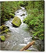 Peaceful Flowing Waters Canvas Print