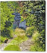 Peaceful Morning Canvas Print