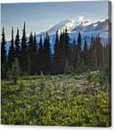 Peaceful Mountain Flowers Canvas Print