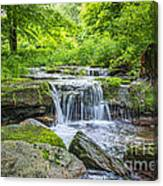 Peaceful Stream Canvas Print