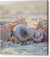 Peaceful Whispers Canvas Print