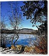 Peaceful Winter Day Canvas Print