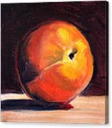 Peach 1 Canvas Print