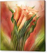 Peach Callas Canvas Print