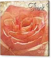 Peach Rose Thank You Card Canvas Print