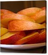 Peach Slices Canvas Print