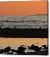 Peach Sunset On The Beach Canvas Print