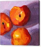 Peach Trio Canvas Print
