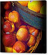 Peaches And Citrus With Blue Wooden Basket Canvas Print
